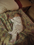 Sleeping Bean 2.JPG