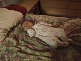 Sleeping Bean 3.JPG