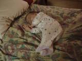 Sleeping Bean 5.JPG