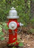 fire_hydrant_sm.jpg