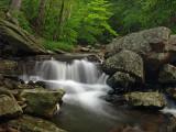 wHunting Creek16 5-31-08 P5312105.jpg
