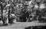 Gateswood Lovers Lane 1933