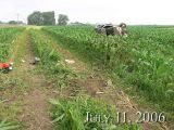 Dickinson County July 11, 2006