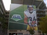 Steelers 005.jpg