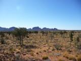 Outback51.jpg