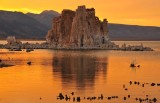 Late Afternoon Llight, Mono Lake