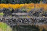 Beaver Dam, Idaho