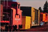 At the McCloud Rail Yard, California
