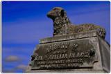 Garden of Memories Cemetery, Salinas