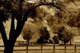 The Church at Nicasio, California