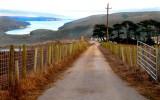 Farm Scene #1