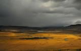 Hayden Valley - Coming Storm