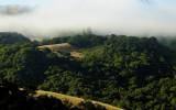 Isolation Above San Simeon