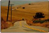 The Road between Petaluma and Pt. Reyes