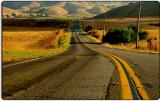 The Road to Petaluma