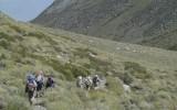 Descending through desert-like terrain.