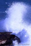 Tai Tau Chau - Wave ¤jÀY¬w¡D®ö