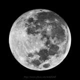 The biggest moon on 11.1.2009 ³Ì¤jªº¤ë«G