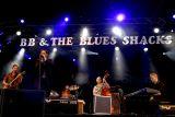 B B & The Blues shacks 5122.JPG