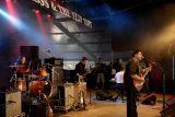 Nick Moss & the Fliptops 5168.JPG