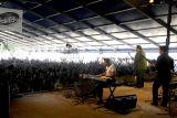 Nick Moss & the Fliptops 5177.JPG