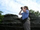 Scanning for Raptors