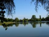 Nice Size Pond