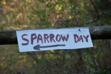 8th Annual BCBC Sparrow Day - October 23, 2010