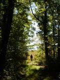 DB National Forest - September 23, 2012