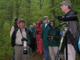 Friday - Early Birding Hike