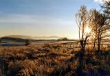 Muir In Winter