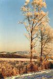 Muir Gate in Winter