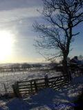 Winter Scene 1.JPG