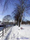 The Haugh In Winter