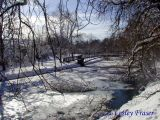 The Spetch In Winter 1