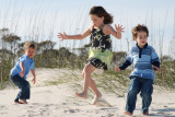Beach kids and crab hunting