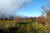 A walk between rain and shine