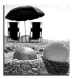 Man & Beach