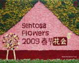 Sentosa Flowers 2009
