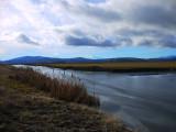 16. Water Wonder on the Wetlands