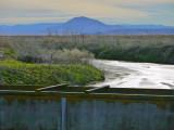 17. Wetlands gateway