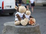 Monkey with Friends