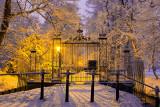 Snow-Laden Gate