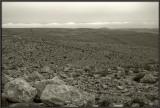 Mt. Harif