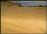 Dunes in Nachal Lavan (White River)