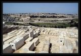 Mt. of Olives graveyard