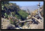 El-Al gorge, Golan heights