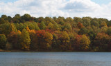 Changing colors by the lake
