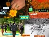 2011 PaD + BEYOND POSITIVE ENERGY REVOLUTION for the GLOBE!!!!