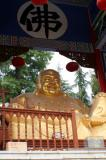 Buddhist Temples 2006